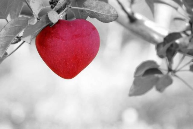 szaleńcza miłość - psychologia